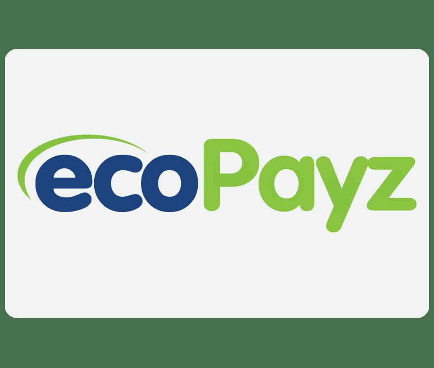 112 Cassino online EcoPayz
